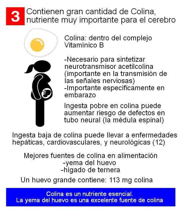 colina beneficios del huevo