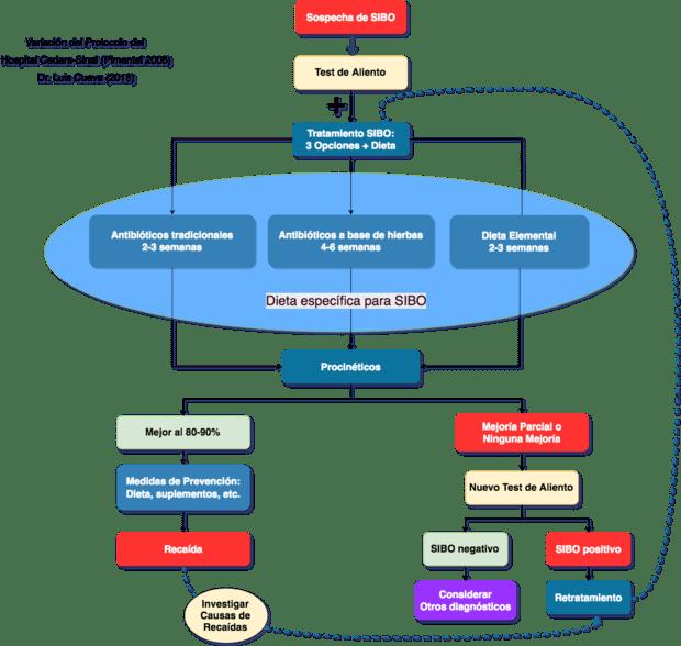Sobrecrecimiento Bacteriano Tratamientos recomendados