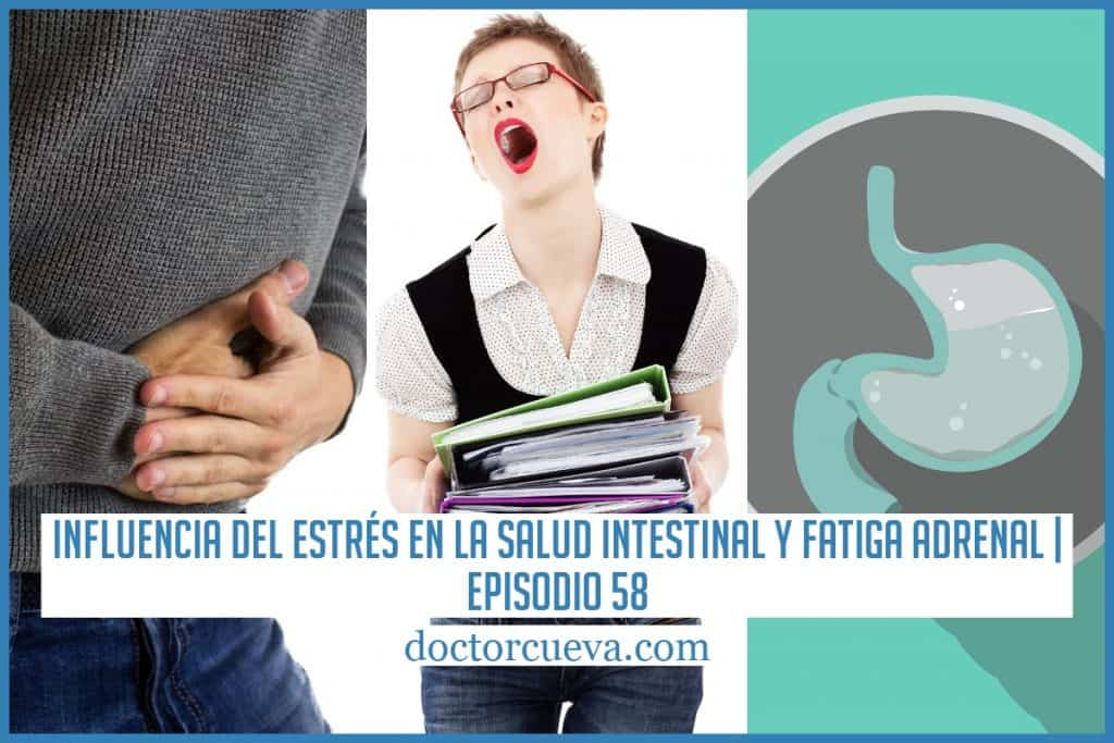 Influencia del estrés en la salud Intestinal y fatiga adrenal