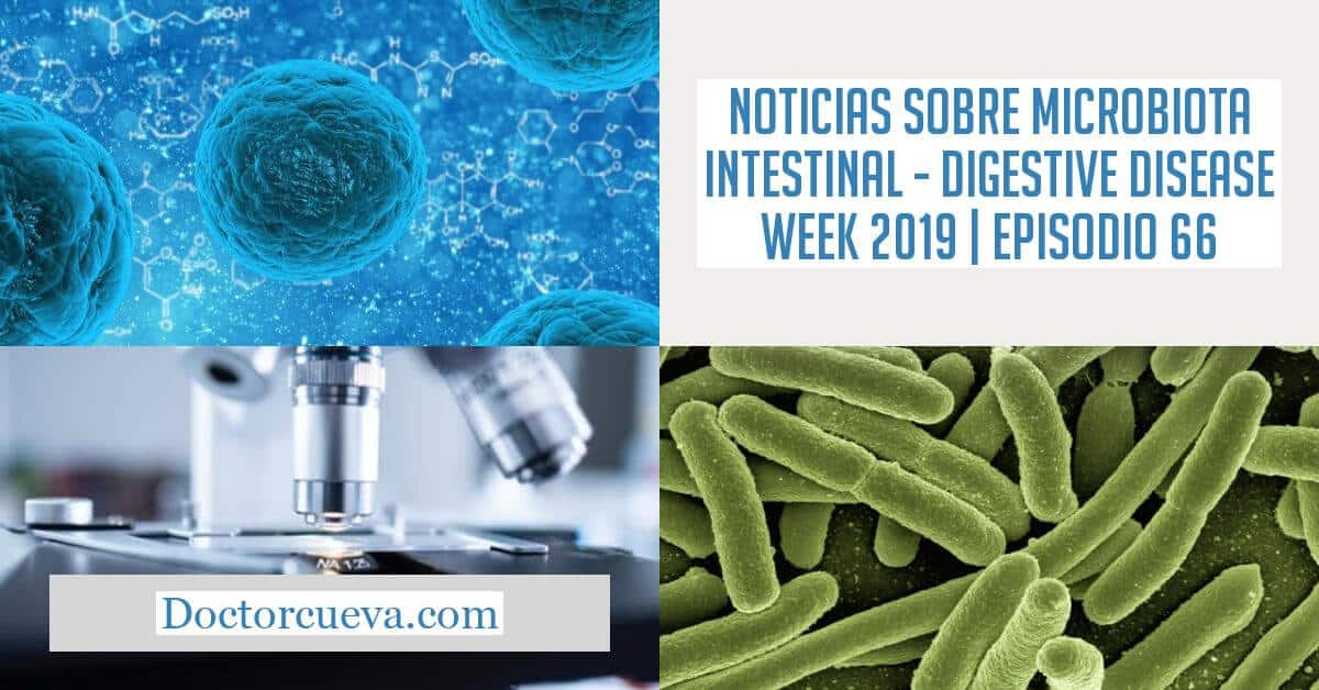 noticias microbiota intestinal