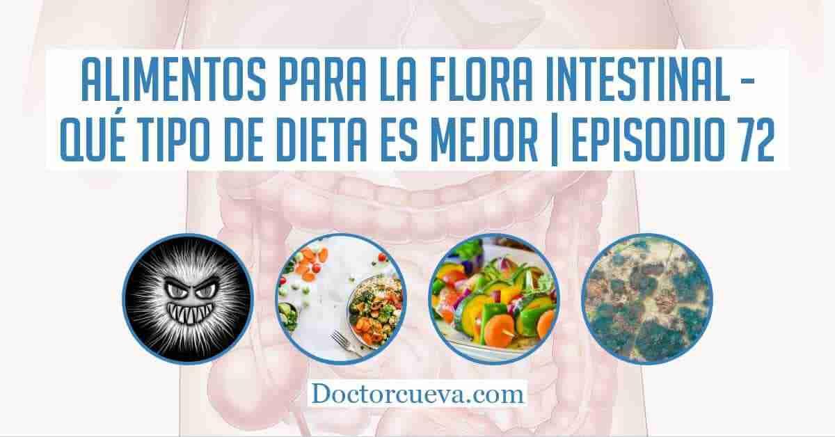 alimentos para la flora intestinal