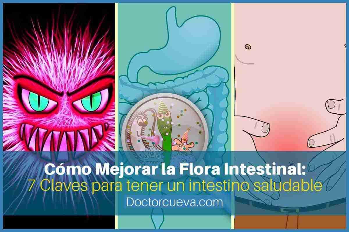 Cómo se puede mejorar la flora intestinal - 7 Claves